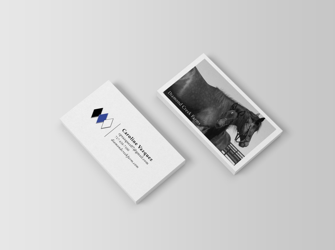 Business Card Mockups3